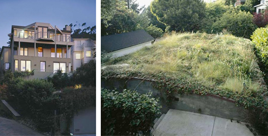 Karin Payson built one of the first green roofs in San Francisco for her Hill House project, in 2003.