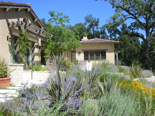 Arterra llp landscape architect interview on the architect for California native landscape design