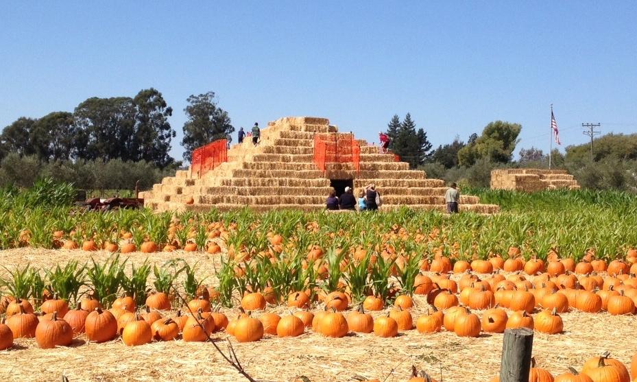 Country Pyramid