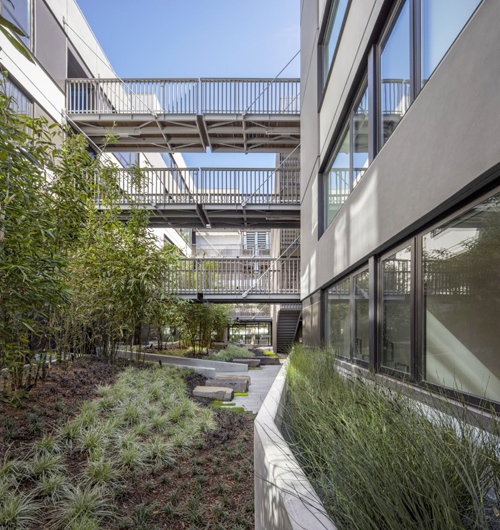 Landscaping is an integral part of good design. Too often, a bloated building will try to max out interior square footage and lose all connection with the outdoors. 400 Grove Street, San Francisco. DDG and Fougeron Architecture. Landscaping: Marta Fry Landscape Associates.